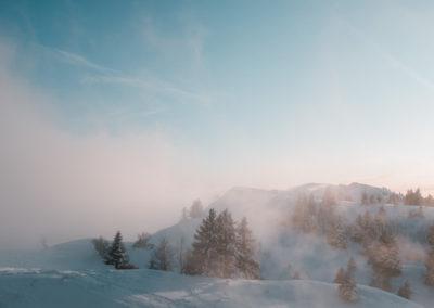 SNOWY JEUDI